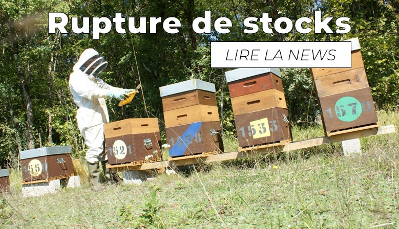 Rupture de stocks